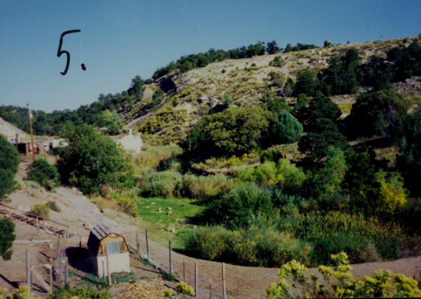 Bumback Springs, 1994; Copyright Royal Gorge Regional Museum & History Center